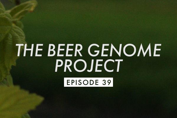 bgp episode 39 header Episode 39: Brewery Collaborations