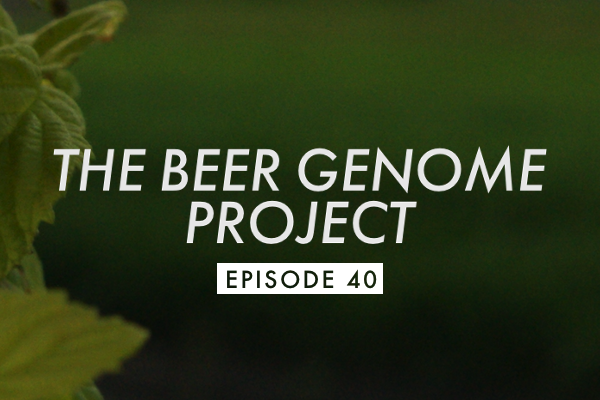 bgp episode 40 header1 Episode 40: Wild Beers of New Glarus