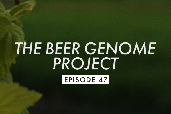 BGP Episode 47 Banner Episode 47: Minnesota Coffee Beer