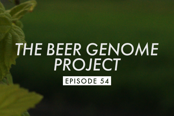 Episode 54 Banner Episode 54: This Evening So Beer